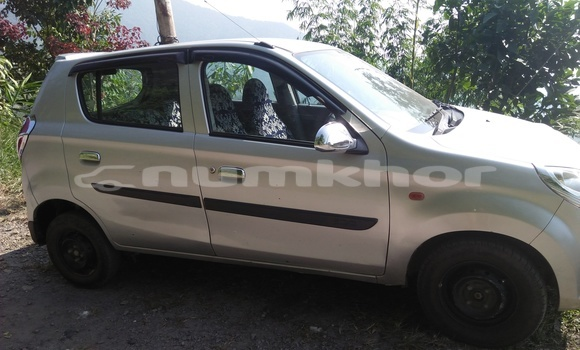 Buy Used Suzuki Alto Silver Car in Pemagatsel in Pemagatsel