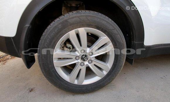 Buy Import Kia Sportage White Car in Import - Dubai in Bumthang