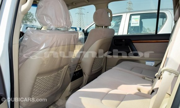 Buy Import Toyota Land Cruiser White Car in Import - Dubai in Bumthang